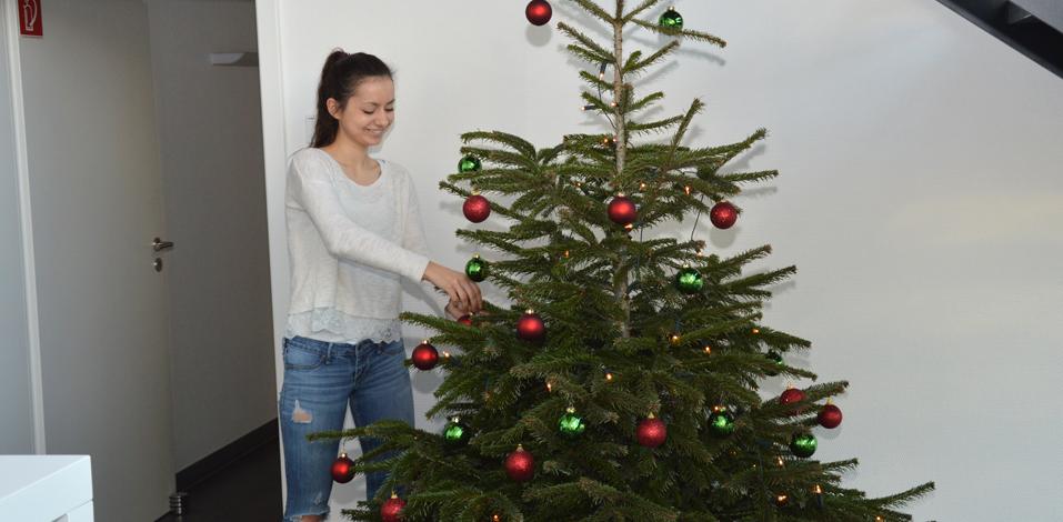 Servico FM Weihnachtsbaum