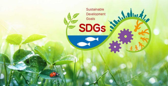 Unsere Vision zur Nachhaltigkeit